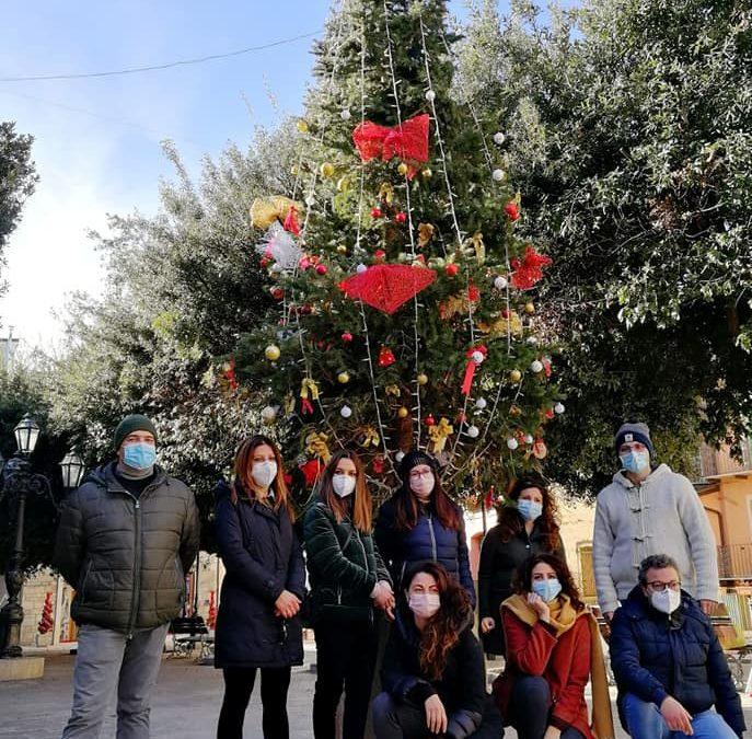 Lo Sprar/Sai di San Bartolomeo in Galdo in piazza per addobbare l'albero di Natale